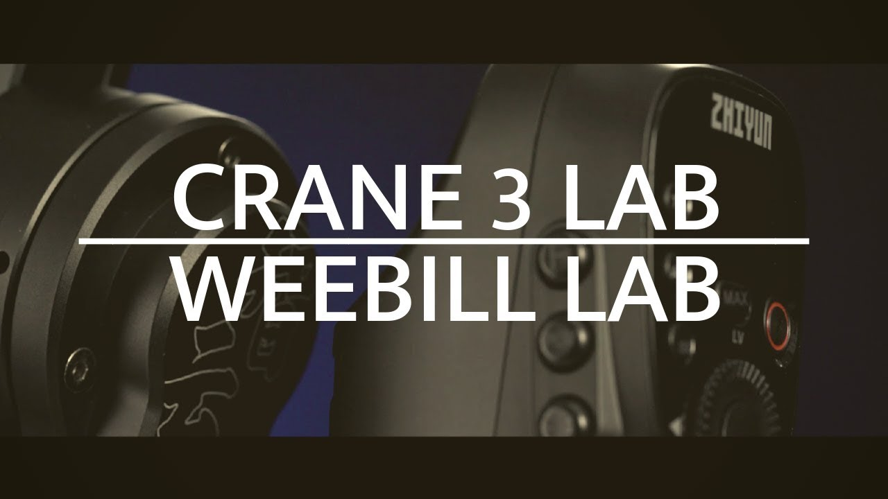 weebill and crane3